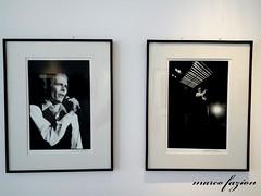 David Bowie (Marco Fazion / visual artist image) Tags: david bowie art pop popart artpop ziggy stardust lets dance michael putland