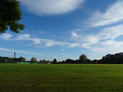 Whispy cirrus (Phil Gayton) Tags: cirrus boroughpark summer morning totnes devon uk