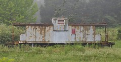 Caneyville, Kentucky (1 of 2) (Bob McGilvray Jr.) Tags: caneyville kentucky ky illinoiscentral ic paducahandlouisville pal caboose steel cupola railroad train tracks grey private fog foggy