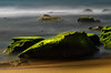 Mystique (Gerry Ligon) Tags: whalebeach mossyrock