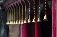 Bells (bigbluewolf) Tags: nikon d7000 biddulph grange nationaltrust national trust nt garden gardens sigma 18250 18250mm
