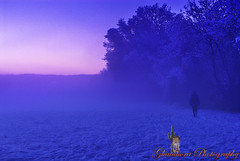 Man in the mist (Ghatahora Photography) Tags: bhupinderghatahora capturenx2 ghatahoraphotography pamberforestpamber cloudstreessunset cyanotypestonning landscapes naturetreebwcloseup sunriselakeslakedistrict