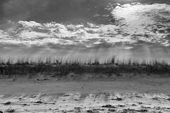 Beach (t s george) Tags: summer bw monochrome sunrays capecod newengland beach sanddunes sunset canon5dmarkii