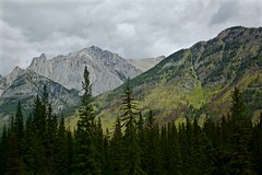 Rocky Mountains - Banff (Eric Luesink) Tags: banff canada outdoors outdoor outside tree trees forest woods mountains mountain rocky hill hills sureal stunning captivating clouds overcast
