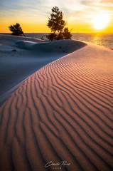 Endless.. (Claudio Russa Photography) Tags: trees sky landscape sea sunset water nature beach travel sun light coast italy waves beautiful nikon sand time shadows italia d700 seaside holiday dune endless theperfectphotographer