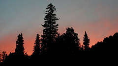 Sunset at Purgatory (mochoajr) Tags: purgatory durango dmr sunset durangomoutainresort trees colorado note4 samsung samsungnote4