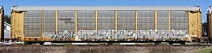 Virus/Hews/Apaul/Tars (quiet-silence) Tags: graffiti graff freight fr8 train railroad railcar art virus hews apaul tars aa aacrew autorack ns norfolksouthern ttgx985414