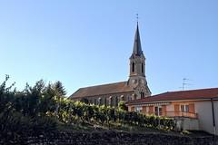 Vigne et clocher (Chemose) Tags: vergisson vine vigne vineyard vignoble clocher église church steeple village bourgogne burgundy bourgognedusud southburgundy france canon eos 7d hdr juillet july summer