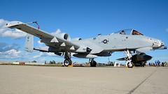 A-10 Warthog (nick123n) Tags: a10 30mm gun cannon usaf warthog plane aircraft military combat