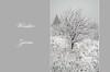 Winter (aśka malec) Tags: las trees winter sky white mountain snow cold tree ice grass fog clouds forest petals frost loneliness sam box joy dry pole petal willow same zima spruce góry śnieg lód mgła mróz trawa drzewo chmury niebo sucha drzewa radość biały samotność świerk zimno wierzba płatki płatek