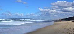 Dog walking Beach, the long walk back! (Worjohn) Tags: sea dog seascape water digital john newcastle walking landscape nikon surf waves image australia bluesky thompson sandybeach d7000 worjohn yahoo:yourpictures=australia