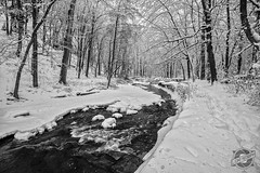 Serene Harmony (CJ Schmit) Tags: trees winter blackandwhite bw usa snow water monochrome wisconsin creek canon stream unitedstates milwaukee southmilwaukee canonef1740mmf40lusm oakcreekparkway 5dmarkii canon5dmarkii cjschmit wwwcjschmitcom niksilverefex2 cjschmitphotography