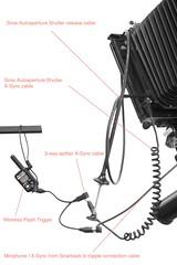 _Sinarback-Macroscan_0007 (AndreiB) Tags: flash cable shutter setup xsync autoaperture sinarc sinarback 23hr macroscan