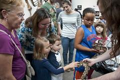 1301260040 (pcppire) Tags: florida gainesville collections snakes fossils vp museumexhibits vertebratepaleontology titanoboa vertpaleo pcppire