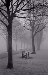 Foggy Morning - Bakewell (Regular Rod) Tags: morning light blackandwhite sun cold tree 120 film day derbyshire peakdistrict 6x9 bakewell array adox agfarecordiii ysplix pyrocatechol catechol chs25art obsidianaqua filmdev:recipe=8946