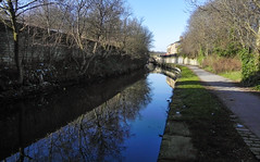 A distant Armley Mill (jasonmgabriel) Tags: trees reflection mill water canal path leeds scenary towpath armley leedstoliverpoolcanal