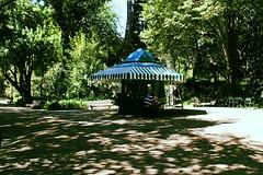 (barbaraventura) Tags: park old parque man portugal café canon reading lisboa lisbon estrela revistas books read biblioteca jardim da coffe ler leitura idosos papelaria velhotes 1100d