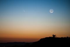 Comet Pan-STARRS (sbess) Tags: sunset sky moon astronomy heavens comet cometpanstarrs