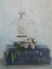 The New Hobby. Press L if you have time. (jennyw47) Tags: stilllife fern birdcage whimsy wirework vintagebooks astr tatot easterdaisymauvemauveflowertexture jennyw47 jennyw47stexture
