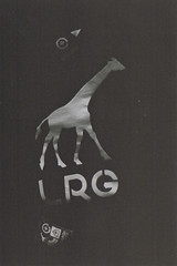 LRG 'Giraffe' Sweatshirt (old_skool_paul) Tags: life park camera new winter light bw white snow black macro film beautiful fashion wow 50mm mono town high amazing student nikon exposure moments photographer shadows skateboarding jan buckinghamshire grain january nuts culture style skaters special professional xp2 400 skate skateboard lives vans local uni 20 february feb sputnik nikkor f18 boardslide limited edition bucks vivitar ilford super8 levels supreme wycombe fg 18mm 200mm chignon 2013