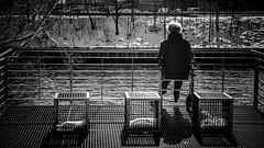 Die alte Frau und das Meer ... 11/52 (Skley) Tags: wedding bw berlin film rollei analog photo meer foto fotografie creative picture commons cc sw frau bild schwarz alte kreativ infrarot weis 099 ir400 skley