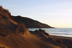 Sun, sand and sea (Flick Vlooi ~ (inactive for most, layout too slow)) Tags: ocean light sunset newzealand landscape evening sand dunes hills sunsetbeach sonyp92 portwaikato dreamphoto
