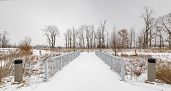 Snow Bridge (bill.d) Tags: bridge winter panorama snow cold tree us michigan pano unitedstatesofamerica overcast wideangle kalamazoo ptgui kalamazoocounty canong11 ononeperfecteffects businesstechnologyandresearchpark