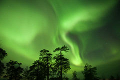 St. Patrick's Day Party in the Sky (Kristin Repsher) Tags: finland nikon aurora lapland stpatricksday northernlights auroraborealis cme solarstorm d700 afsnikkor2470mmf28ed