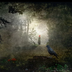 Rotkppchen (h.koppdelaney) Tags: art digital photoshop symbol dream picture philosophy fairy fantasy metaphor tale symbolism psychology archetype rotkppchen gebrdergrimm koppdelaney