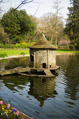 Duck house ! (Constantinos Achilleos) Tags: street lake tree digital landscape town duck pond nikon village birdhouse nikkor duckhouse littlehouse cypriot 2470mm nikoncamera achilleos d3s nikond3s constantinosachilleos nikond3snoflash achilleosphotography wwwachilleosphotographycom