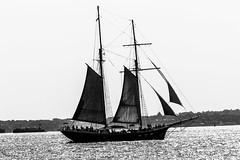 VESSEL (patrick etter) Tags: old city sea blackandwhite usa ny newyork history america photography boat photo sailing ship cityscape sailingship blackwhitephotos silentemotions patricketter