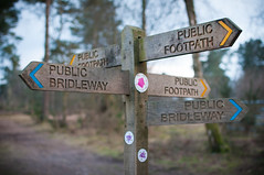 March 30th: Which Way? (markkeohane) Tags: countryside nikon country footpath bridleway haslemere marleycommon d300s camelsdale nikon35mmf18g
