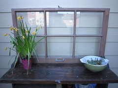Potting Bench (IslandHula) Tags: bench potting
