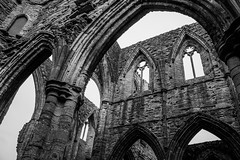 "Tintern Abbey • <a style=""font-size:0.8em;"" href=""http://www.flickr.com/photos/32236014@N07/8636372664/"" target=""_blank"">View on Flickr</a>"