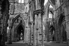 "Tintern Abbey • <a style=""font-size:0.8em;"" href=""http://www.flickr.com/photos/32236014@N07/8636383090/"" target=""_blank"">View on Flickr</a>"