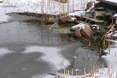 Fuente congelada - Ohio (myrmardan) Tags: schnee winter ohio usa snow ice fountain america unitedstates hiver nieve fuente neve invierno neige amerika eis inverno fontana fontaine fonte hielo glace estadosunidos  etatsunis