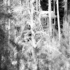 Cache dans la fort... o s'coule l'enfance... la maison dans les arbres...!!! (Denis Collette...!!!) Tags: house canada tree childhood forest quebec treehouse qubec maison larch mauricie foret arbre fort bois cabane fret enfance mlze bois notredamedemontauban lacducastor maisondanslesarbres mkinac maisondelalune