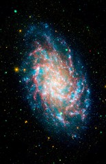 Multispectral Triangulum Galaxy 4 Channel (AstroRob LA) Tags: ngc598 m33 triangulumgalaxy messier33