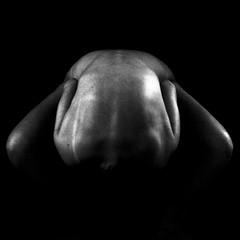 a back. a person. a life. (MathildaHartvigson) Tags: light portrait blackandwhite woman selfportrait art texture female contrast self back arms legs skin artistic sweden body inspired dramatic konst photograph crop bodyart kontrast ung jönköping självporträtt artisticphotography kropp rygg youngphotographer womanphotographer