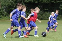 Feriencamp Neumnster 28.07.16 - b (86) (HSV-Fuballschule) Tags: hsv fussballschule feriencamp neumnster vom 2507 bis 29072016