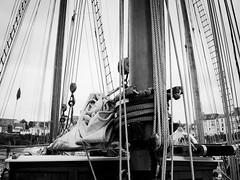 Temps fte 2016 - Douarnenez (steph20_2) Tags: douarnenez bretagne finistre bateau panasonic gh3 m43 lumix monochrome monochrom noir noiretblanc blanc black bw white skanchelli 20mm