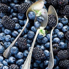 pure & natural #blueberry & #blackberry . Full of #anthocyanin , #antioxidant ? it must be really #healty  (Pretty Cool Pic) Tags: pretty cool pure natural blueberry blackberry full anthocyanin antioxidant it must be really healty