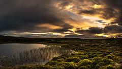 Green hills and golden sunset (photomatic.se) Tags: ifttt 500px dalarna sweden outdoors sunset green shrubbery water reflection golden grvelsjn