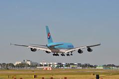 KE0907 ICN-LHR (A380spotter) Tags: landing approach arrival finals shortfinals airbus a380 800 msn0096 hl7619  koreanair kal ke ke0907 icnlhr runway09l 09l london heathrow egll lhr