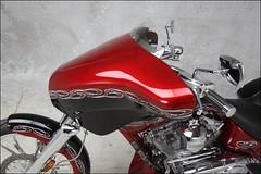 bikes-2009world-080-b-l