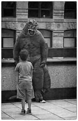 Godzilla & the kid (Wanderfull1) Tags: godzilla cuff rooftop movie downtown calgary marriott