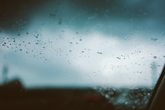 DSC03806 (ikuin) Tags: 2016生活紀錄 sonya7r sony a7r sonyilcea7r ilcea7r fullframe ff emount carlzeissdistagontfe35mmf14za sel35f14z fe35mmf14 carlzeiss zeiss t distagon 35mm f14 雨 rain 365 emily 中壢 高雄 kaohsiung