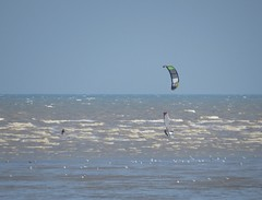 3515 Kite boarder and wind surfer in action (Andy panomaniacanonymous) Tags: 20160816 bbb ccc coast kent kiteboarder kkk littlestoneonsea sea sss windsurfer www