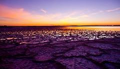 Linger (VB31Photo) Tags: vb31photo nature landscape languedoc dawn saltmarshes salt salin salines aigues mortes gard sky skyline purple morning france