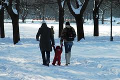P ski i Frognerparken (Bymiljetaten) Tags: aktivitet barn familie kunder lypekjring lypepreparering lyper mennesker park personer preppingiparkerogfriomrder skiging skituribyen sn tilrettelegging vigelandsparken frogner friluft bruker folk menneske person